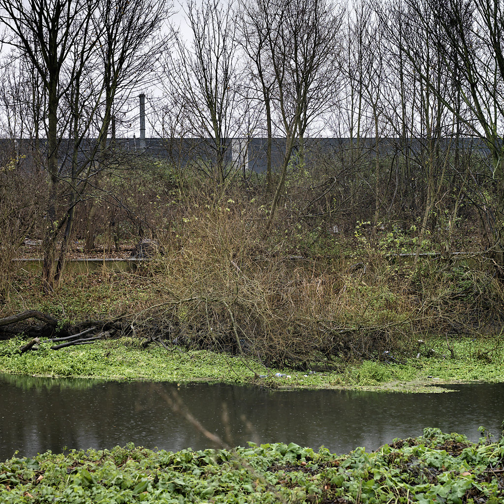 RiverBank.jpg